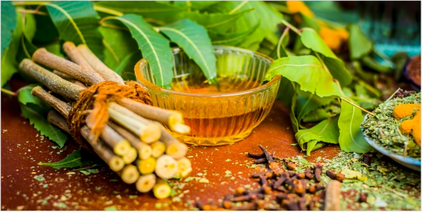 The Journey of Ayurveda